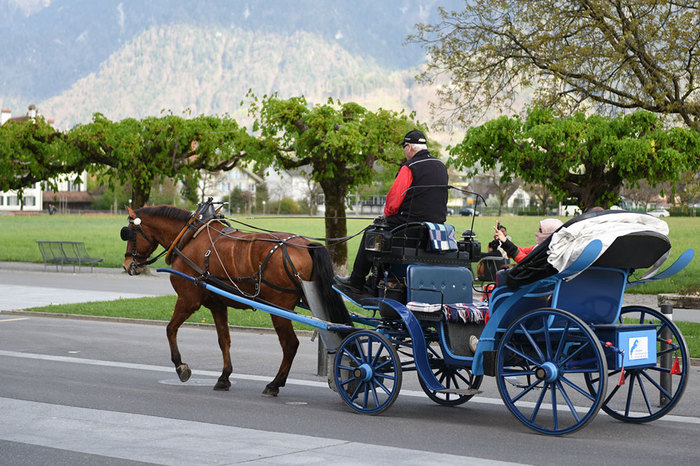 Cart in interlaken.jpg