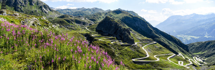 Swiss-Alps-Path.jpg