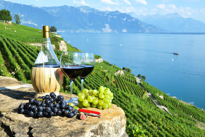 Private Trip From Geneva to Lavaux for Swiss Wine Tasting