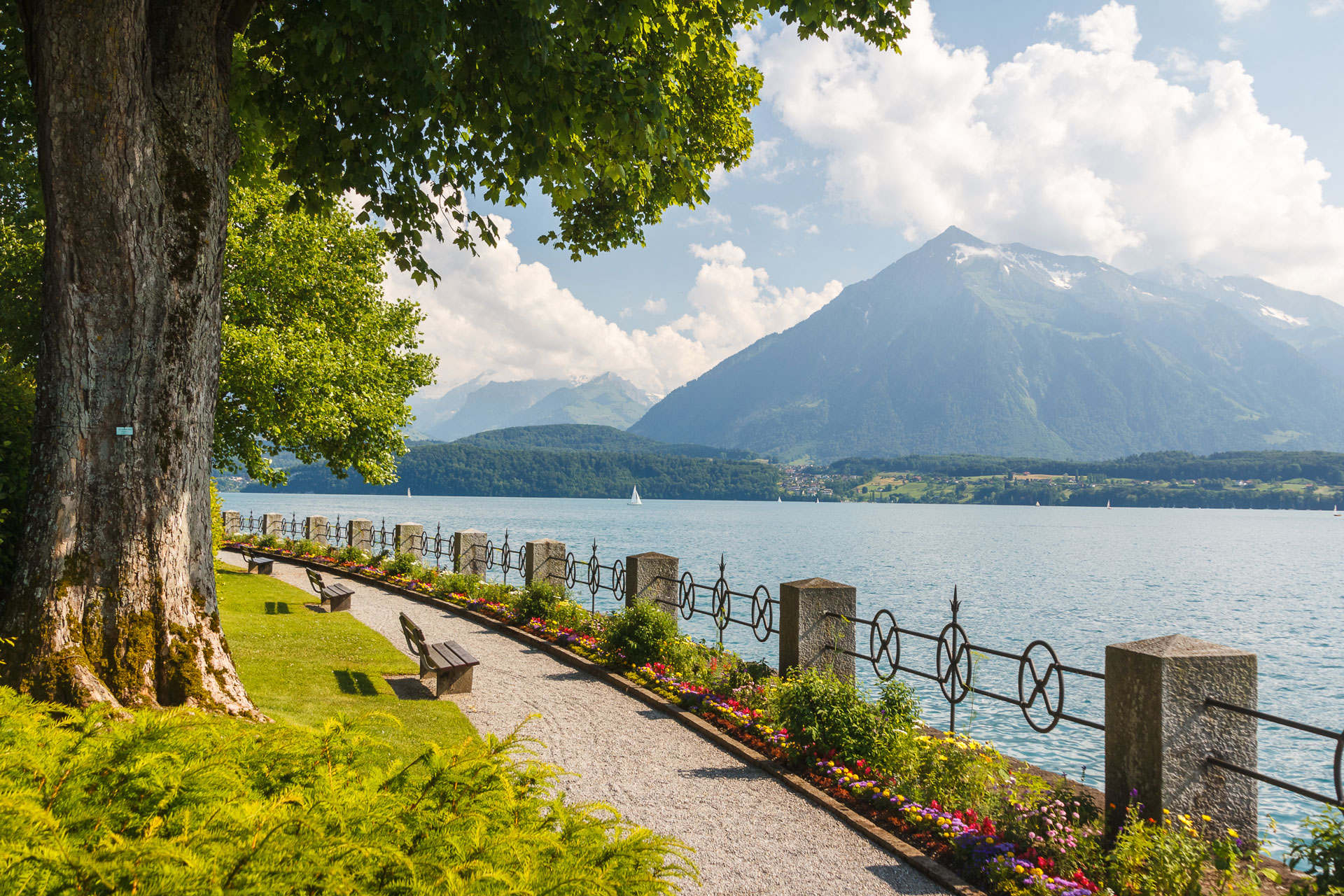 Lake-Thun-Switzerland.jpg